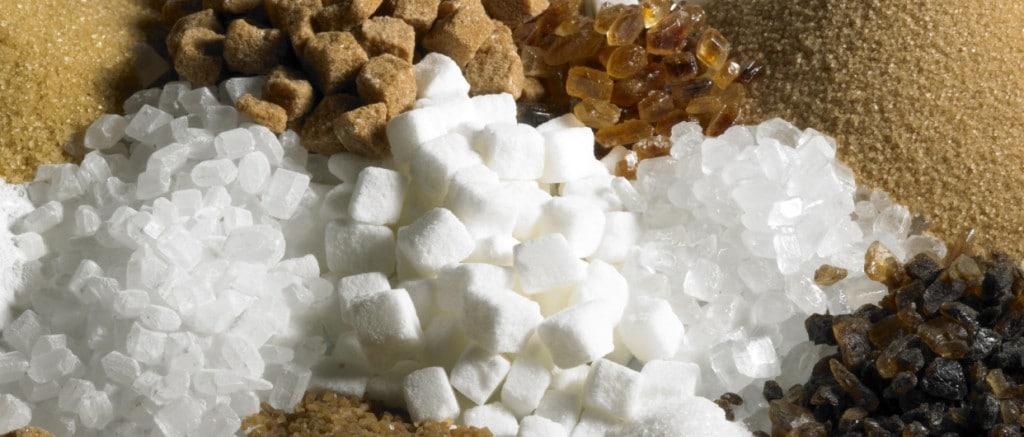 sucre biologique